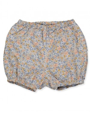 BLOOMERS 335